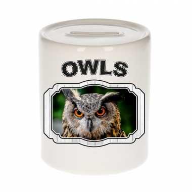 Dieren uil spaarpot owls uilen spaarpotten kinderen 9 cm