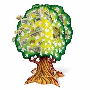 Groen geldboompje met witte bloemen