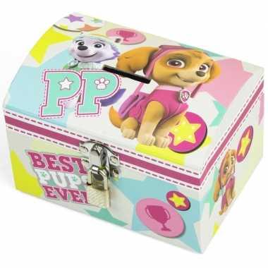 Paw patrol mint/roze kinder spaarpot/geldkistje 14 x 10 cm bestellen